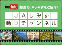 JAしみず 公式 動画チャンネル